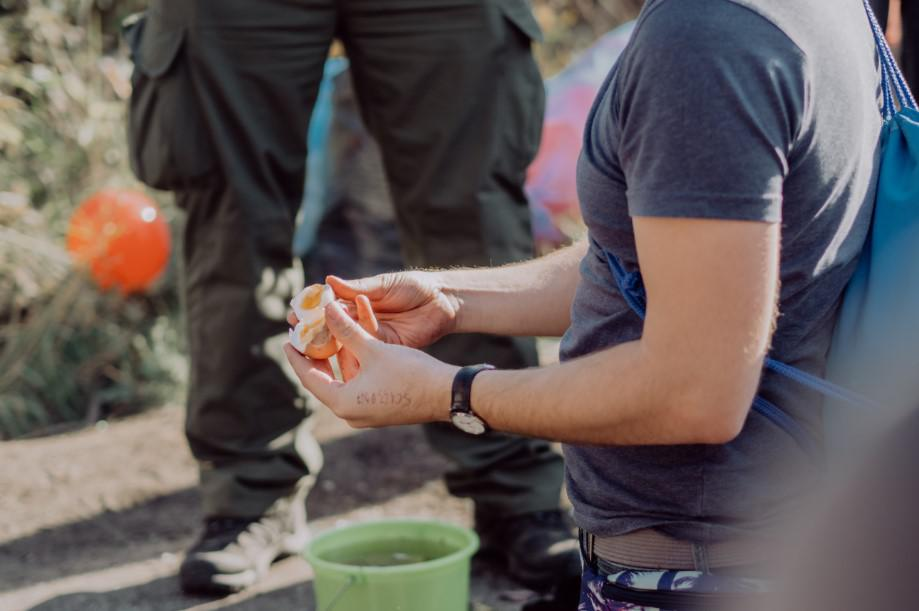 zadanie w grze terenowej, jedzenie jaja