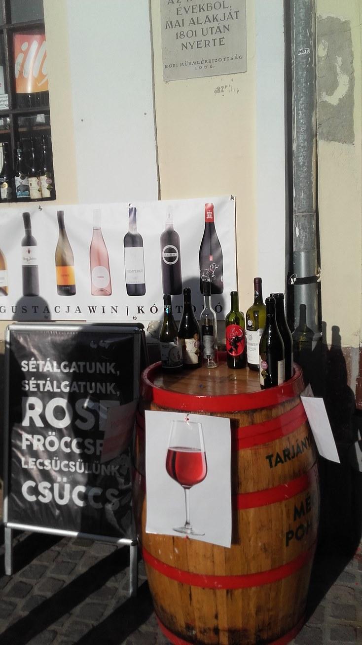 degustacja win węgry