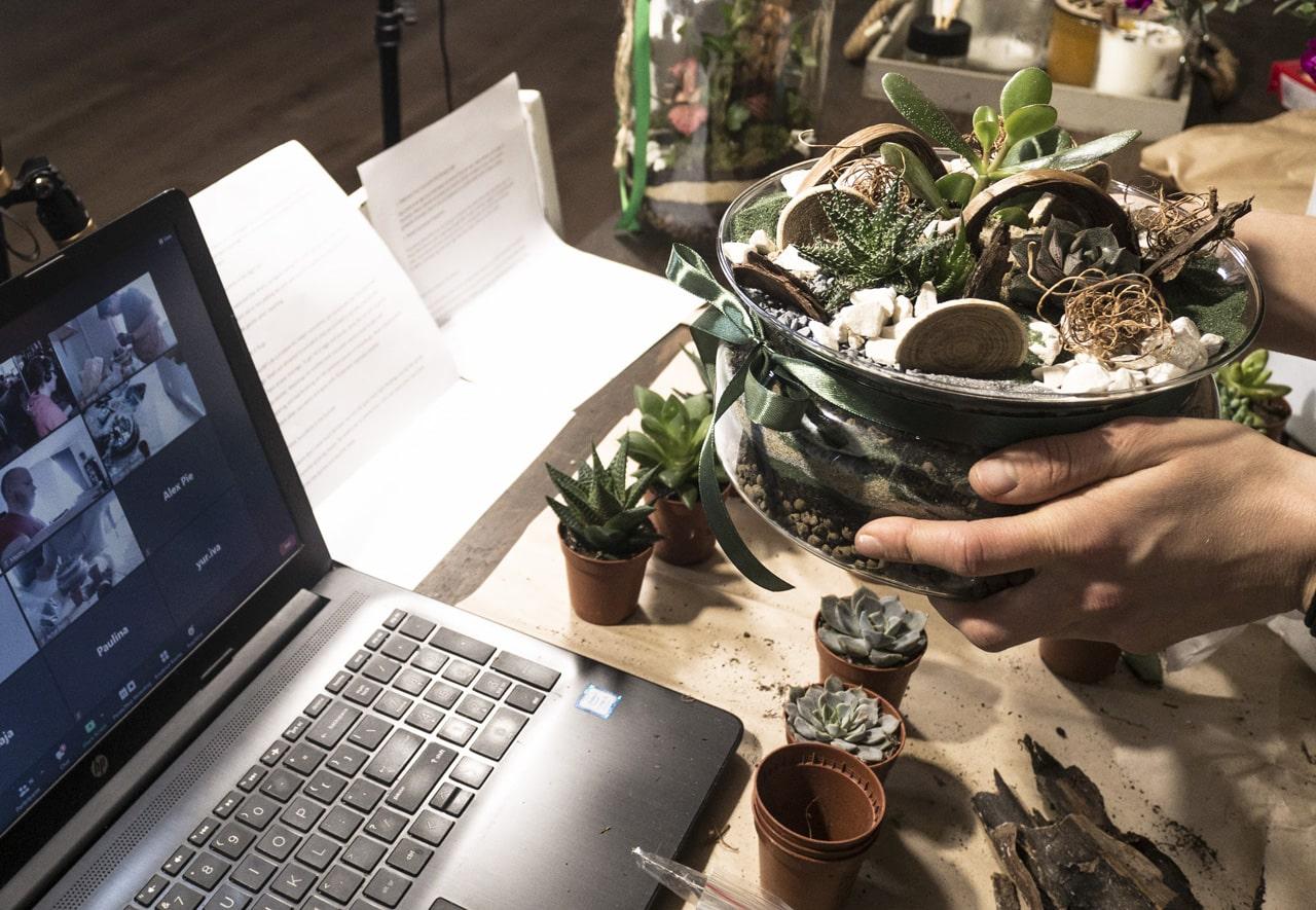 warsztaty z tworzenia mini pustyni online