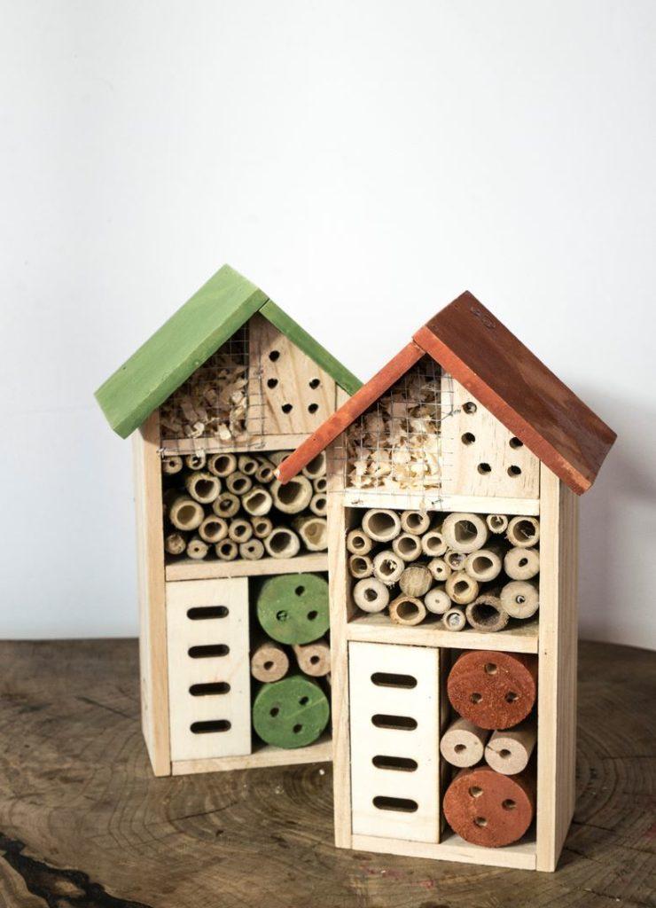 domek dla owadów, DIY event online