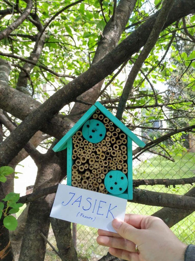 eko liga, budowanie domów dla owadów, domek dla owadów